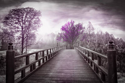 Dreamy Pink Park Scene Photograph - Dreaming At Dawn In Pink by Debra and Dave Vanderlaan
