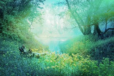 Photograph - Dreaming In Aqua by Debra and Dave Vanderlaan