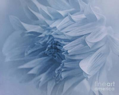 Photograph - Dreaming In Blue by Patricia Strand