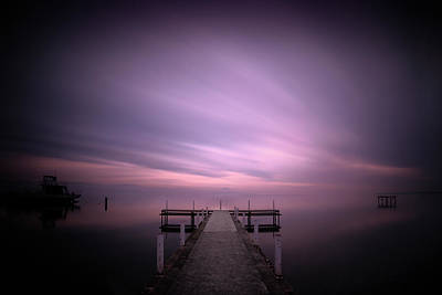Photograph - Dreaming In Purple by Dominique Dubied