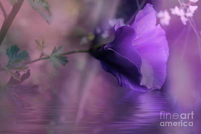 Dreaming In Purple Art Print
