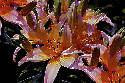 Mixed Media - Dreaming Of Lilies 5 by Lynda Lehmann
