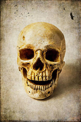 Photograph - Dreaming Skull by Garry Gay