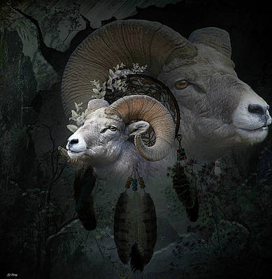 Dream Catcher Gallery Mixed Media - Dreams Of The Ram 2 by G Berry