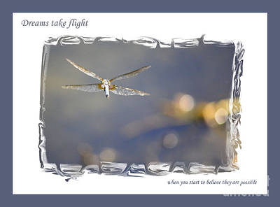 Photograph - Dreams Take Flight Poster Or Card by Carol Groenen