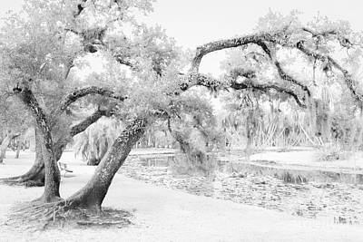St. Lucie County Photograph - Dreams Without Color by Liesl Walsh