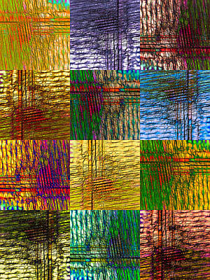 Digital Art - Dreamweaver Blanket by Mike Braun