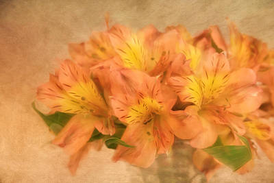 Photograph - Dreamy Autumn Bouquet  by Kim Hojnacki