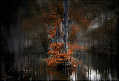 Photograph - Dreamy Autumn by Cecil Fuselier