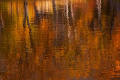 Impressionism Photos - Dreamy Autumn by Karol Livote