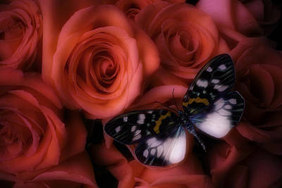 Dreamy Butterfly Art Print