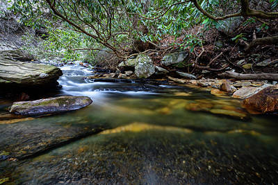 Photograph - Dreamy Creek by Michael Scott