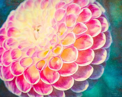 Dreamy Dahlia  Art Print