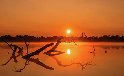 Photograph - Dreamy Dawn by Dan Sproul