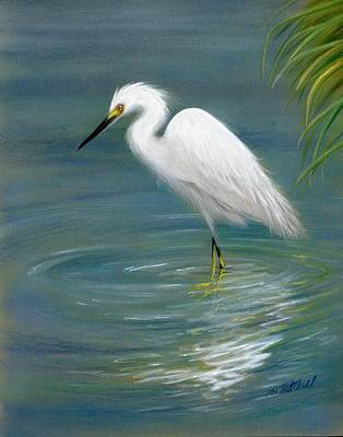 Egret Drawing - Dreamy Egret by Heather Mitchell