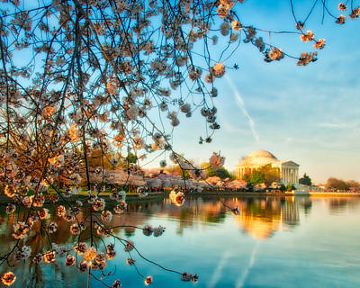 Photograph - Dreamy Jefferson And Flowers by Mark Dodd