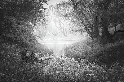 Photograph - Dreamy Morning In Black And White by Debra and Dave Vanderlaan