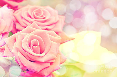 Roses Royalty-Free and Rights-Managed Images - Dreamy pastel roses by Delphimages Photo Creations