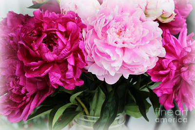 Photograph - Dreamy Peonies by Carol Groenen