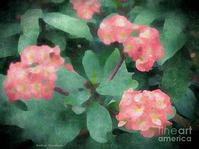 Photograph - Dreamy Pink by Kathie Chicoine