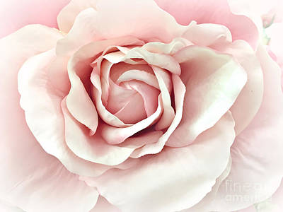 Photograph - Dreamy Romantic Pastel Pink Shabby Chic Rose Closeup - Watercolor Roses  by Kathy Fornal