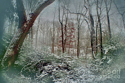 Art Print featuring the photograph Dreamy Snow by Sandy Moulder