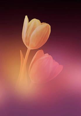 Photograph - Dreamy Tulips 2 by Johanna Hurmerinta