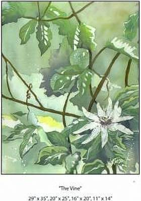Passion Flower Vine Painting - Dreamy Vine by Wendy Tatter