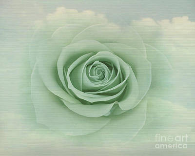 Painting - Dreamy Vintage Floating Rose by Judy Palkimas