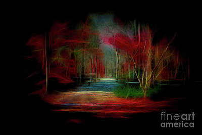 Photograph - Dreamy Walk by Geraldine DeBoer