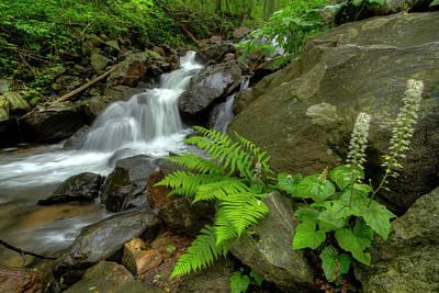 Photograph - Dreamy Waterfall Cascades by Debra and Dave Vanderlaan