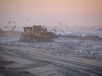 Photograph - Dredge Cat 2 by  Newwwman
