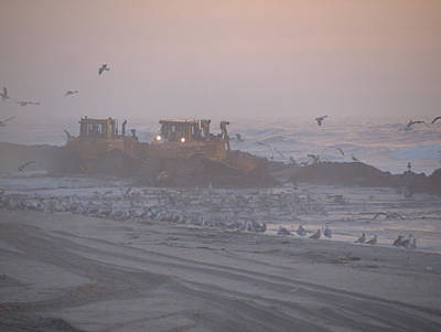 Photograph - Dredge Cat 4 by  Newwwman