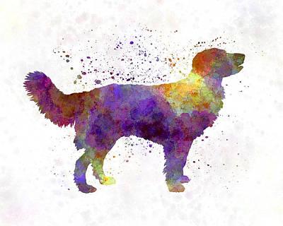 Partridge Painting - Drentsche Partridge Dog In Watercolor by Pablo Romero