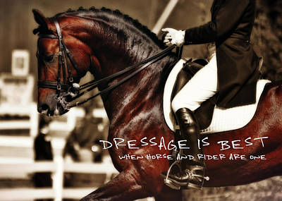Photograph - Dressage Best Quote by JAMART Photography