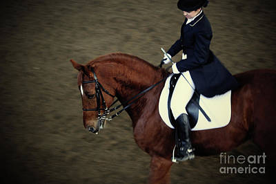 Photograph - Dressage by Dimitar Hristov
