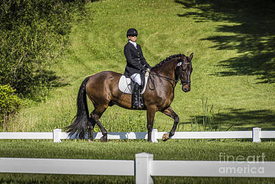 Photograph - Dressage Test by Joann Long