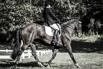 Photograph - Dressage Warm Up by Joann Long