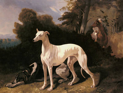 Dreux Alfred De A Greyhound In An Extensive Landscape Art Print by Alfred Dedreux