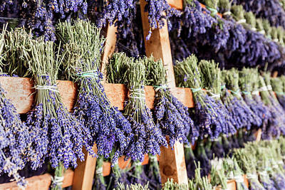 Photograph - Dried Bunches Of Lavender Hanging On Wooden Ladders by Michal Bednarek