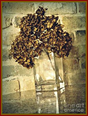 Photograph - Dried Hydrangea 3 by Sarah Loft