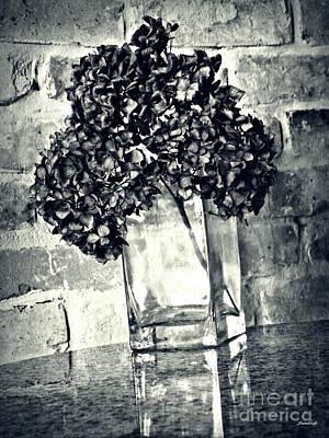 Photograph - Dried Hydrangea 4 by Sarah Loft