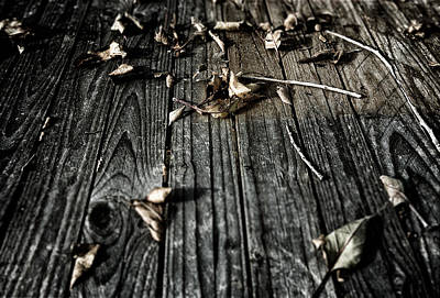 Photograph - Dried Leaves On Wood by John Brink