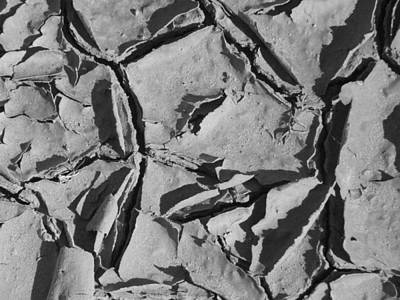 Nature Abstracts Photograph - Dried Mud by Mike McGlothlen