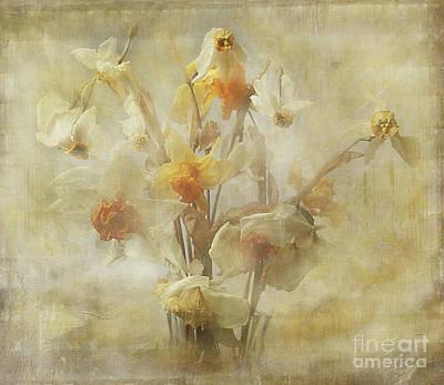 Dried Narcissus Art Print