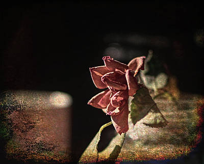 Digital Art - Dried Rose And Coffee by Aliceann Carlton