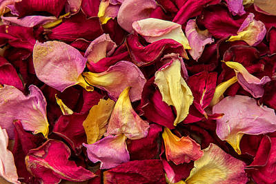 Photograph - Dried Rose Pedals by Jonathan Nguyen