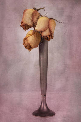 Dried Roses Still Life Art Print by Tom Mc Nemar