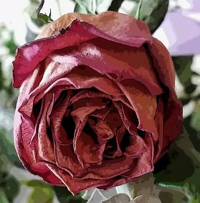Photograph - Dried Single Rose by Pamela Walton