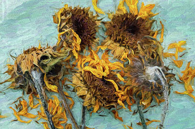 Photograph - Dried Sunflowers by Jerry Gammon